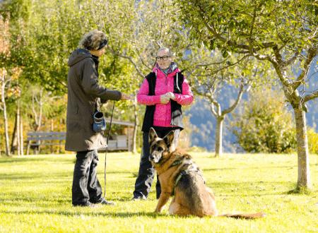 5 Laufmuster für dein Hundetraining