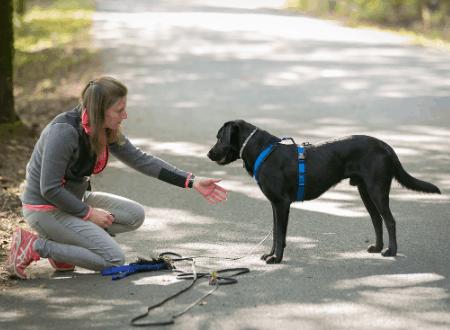 5 Tipps, wie du als Hundehalterin entspannter wirst