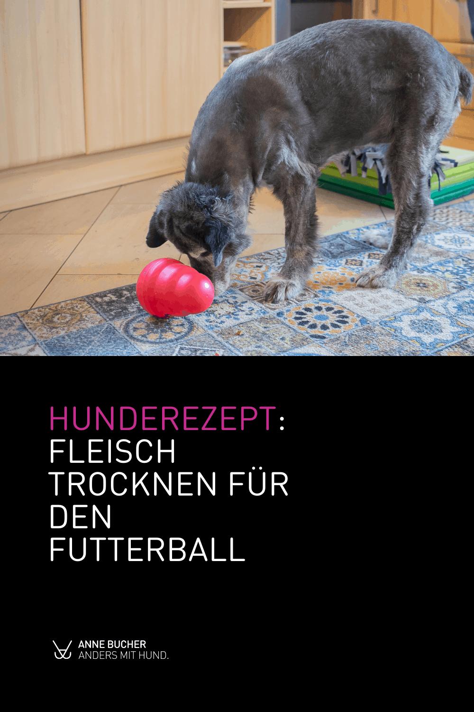 Hunderezept - Fleisch trocknen für den Futterball