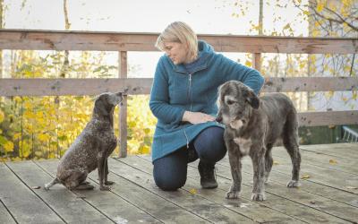 Mehrhundehaltung – Mehr Hunde, mehr Glück?