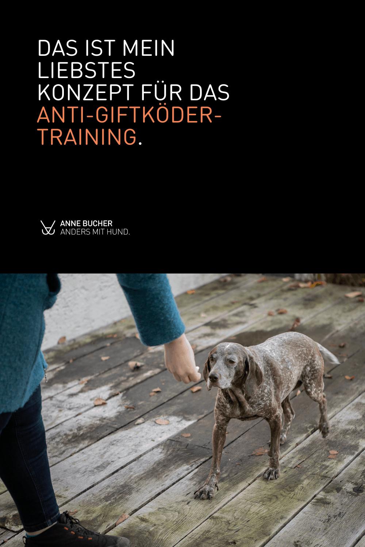 Anti-Giftköder-Training - Trainingskonzepte betrachtet