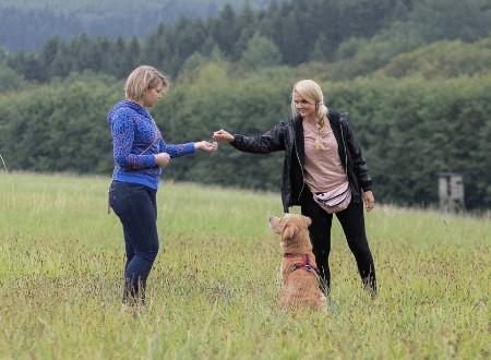 Warum möchtest du eine Hundetrainerausbildung machen