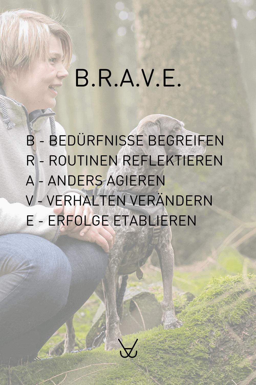 BRAVE - Training für tapfere Teams