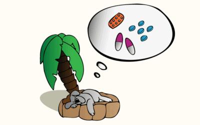 #15 Beruhigungsmittel für Hunde an Silvester