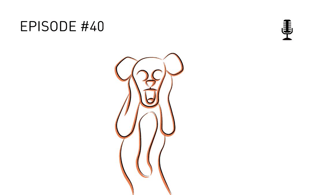 #40 Der Schrei nach Ruhe!