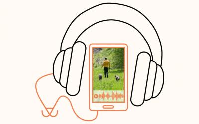 #61 Gelassen Gassi mit Hund – So geht es!