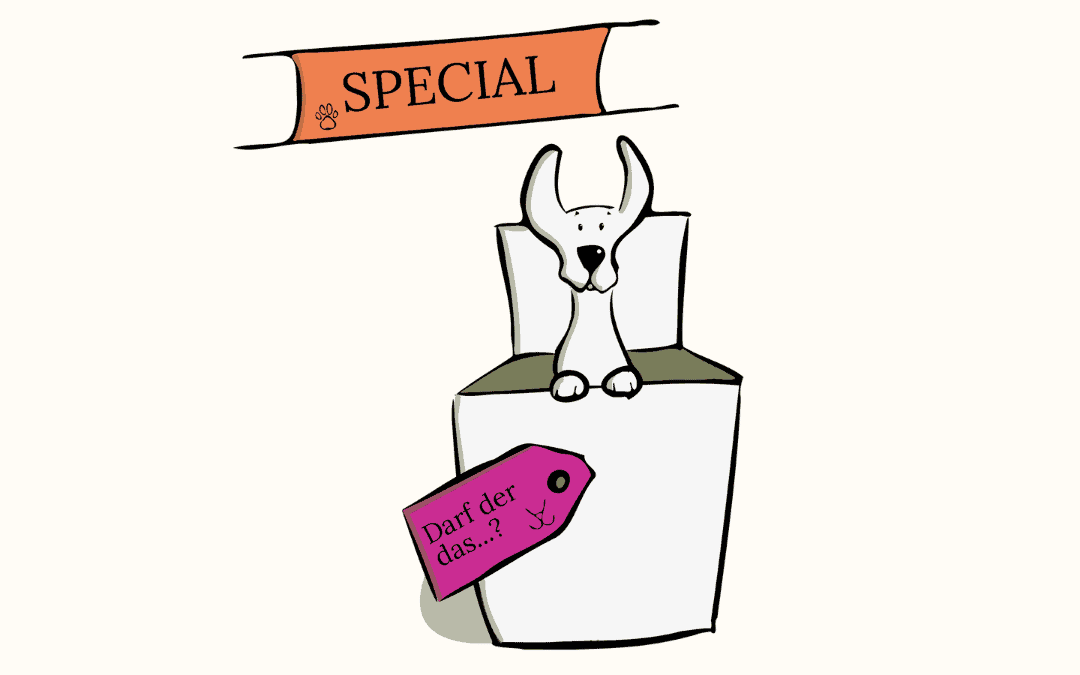 #10 Special – Darf der das…?