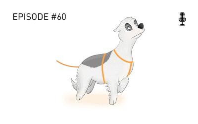 #60 Stress beim Hund