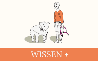 #07 Wissen+ Verhaltensprobleme sind belastend für Hundehalter:innen