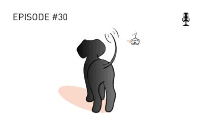 #30 Warum haben so viele Hunde Probleme mit Hundebegegnungen?