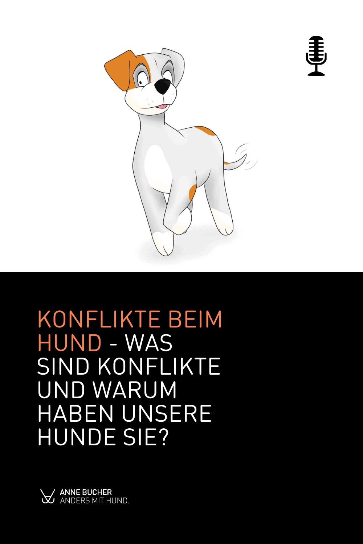 Konflikte beim Hund