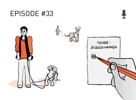 Wie oft du Hundebegegnungen trainieren solltest