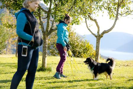 Hundebegegnungen Anne Bucher